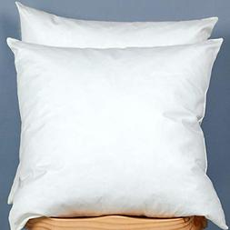 2set Cotton Fabric Pillow Inserts Filled Down Feather Decora
