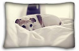 """Custom Cotton & Polyester Soft  Pillowcase Cover 20""""X30"""" One"""