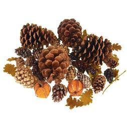 Dried Scented Pine Cones Natural Forms with Pumpkins, 40-Pie