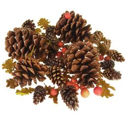 Dried Scented Pine Cones Natural Forms with Red Berries, 40-