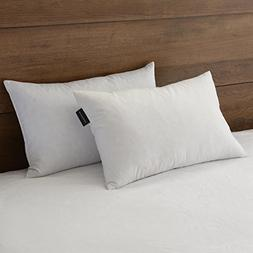 """downluxe 95% Feather 5% Down,100% Cotton Fabric, 12""""x20"""" Obl"""