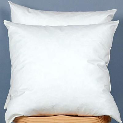 2set cotton fabric pillow inserts filled down