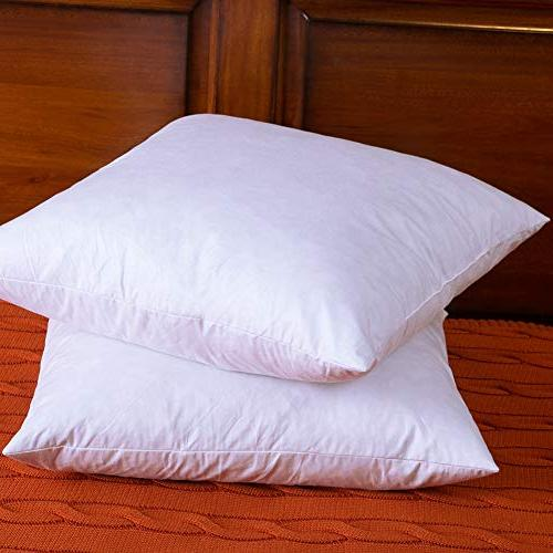 DOWNIGHT of Cotton Inserts, Down Decorative Pillow Insert