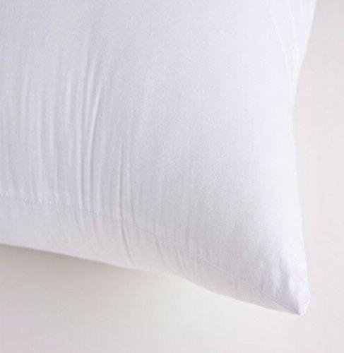 Set Down Pillow Insert, Square, 20X20