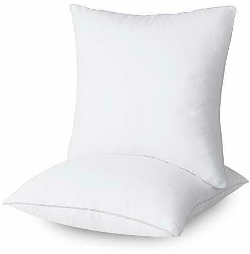 Decorative Pillows Throw Insert of 2 Couch Pillows