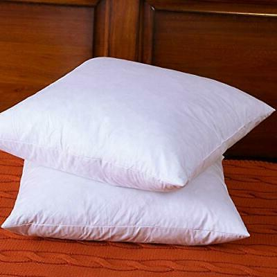 DOWNIGHT Two 20 20 Down Pillow Insert,