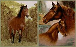 20 Lake Plush Reversible Horse & Colt Imitation Fur Blanket