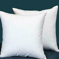 Set of 2 22X22 Square Decorative Down & Feather Throw Pillow