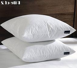 BASIC HOME 22X22 Square Feather & Down Pillow Insert, 100% C